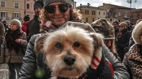 Fano, animali in piazza per la benedizione