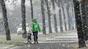 Neve a Imola (Isolapress)