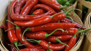 Uno studio ha confermato i benefici del peperoncino rosso - Foto: Helen Sessions / Alamy