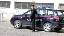 L'operazione è stata condotta dai carabinieri della Compagnia di Cesenatico