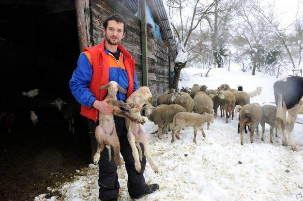 Marco Sebastiani con uno dei suoi animali (Foto Calavita)