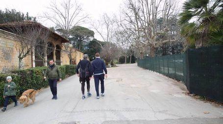 Riaperta la strada utilizzata dal cantiere Leopoldine