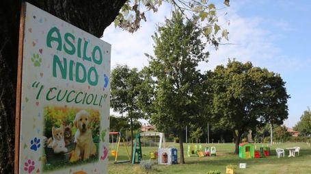 L'asilo nido I Cuccioli di via Montecatone è stato al centro di una vicenda giudiziaria conclusasi ieri con il patteggiamento