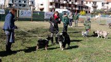 Inaugurazione dell'area di sgambatura per cani a Ponte a Elsa (foto Gianni Nucci/Germogli)
