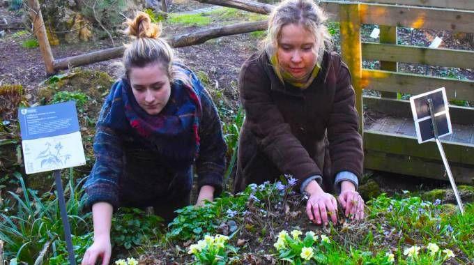 Due ragazze ammirano i fiori all'orto botanico