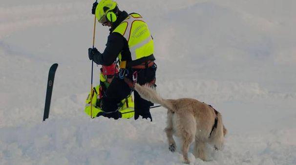 Valanghe, il soccorso alpino in azione (Archivio)