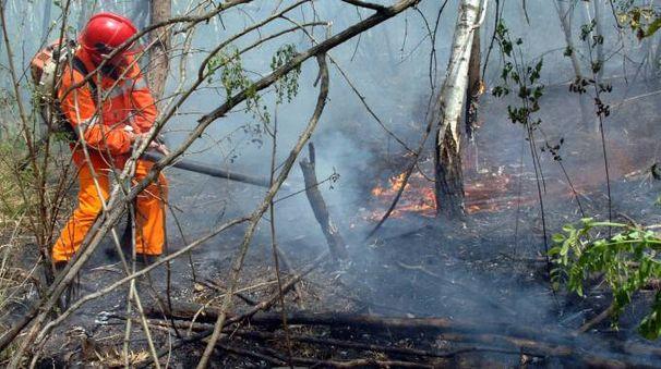 Incendio al Parco delle Groane