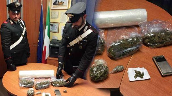 Ecco la droga sequestrata allo spacciatore di Sestino