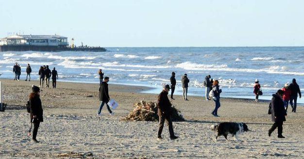 Passeggiate in spiaggia a Rimini (foto Migliorini, Adriapress)
