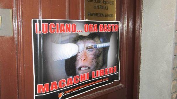 Uno dei manifesti affissi dagli animalisti per la liberazione dei macachi
