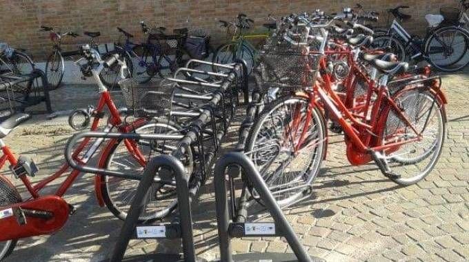 Le bici del bike sharing