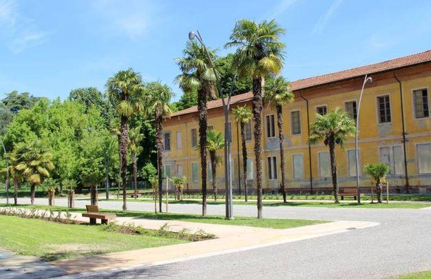 Imola (BO), Parco dell'Osservanza