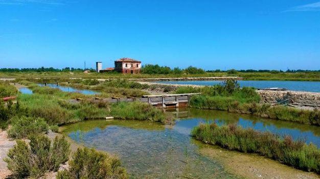 Comacchio (FE), Salina