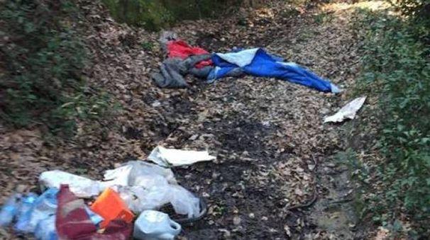 I rifiuti nel bosco