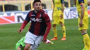 Di Francesco, autore del gol del 4-1 (foto Schicchi)