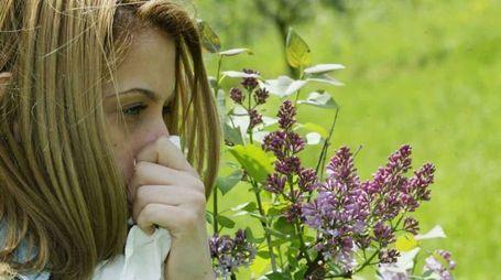Una ragazza ai presi con l'allergia (Germogli)