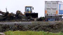 La discarica di Ca' Leona dove, secondo il pentito Nunzio Perrella, sarebbero stati sversati rifiuti pericolosi (foto Bp)