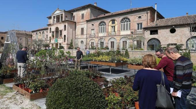 Villa Vismara Currò