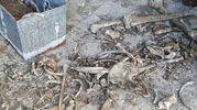 Teschi e ossa umane vicino alla cappella