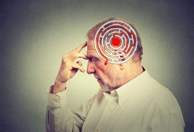 Senza dopamina niente memoria
