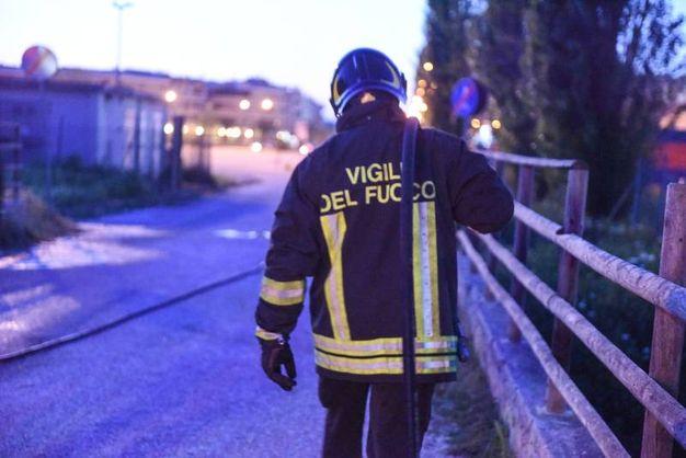 Fiamme nel canneto, l'intervento dei vigili del fuoco (De Marco)