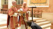 La Via Crucis si è conclusa in Duomo (foto Frasca)