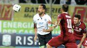 Cesena-Spezia 1-0, Cocco (foto Ravaglia)