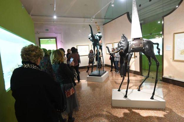 Palazzo Belloni, l'Aidda visita la mostra Dalì Experience (foto Schicchi)