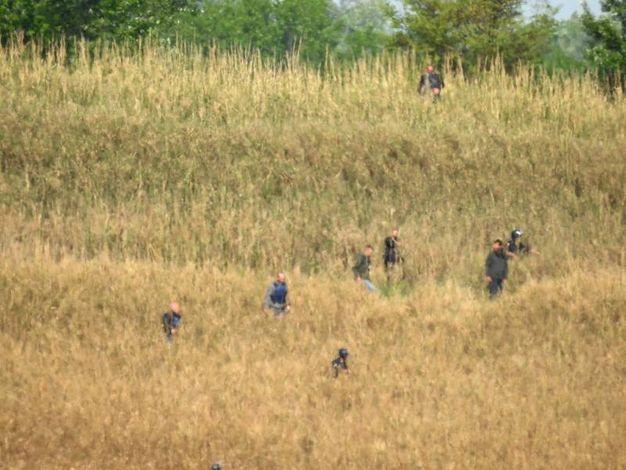 Le ricerche di Igor 'il russo' nelle campagne intorno a Lavezzola (Foto Scardovi)