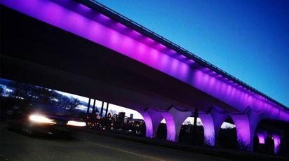 Prince, a un anno dalla morte Minneapolis si tinge di 'purple'
