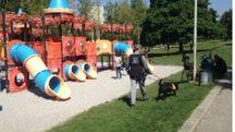 Al parco Giotto