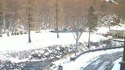 Nevica all'Abetone, foto dalla webcam in Val di Luce
