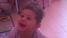 Il piccolo Francesco