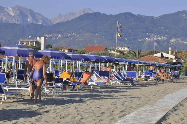 Matrimonio Spiaggia Marina Di Massa : Bandiera blu a massa e carrara foto cronaca lanazione