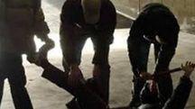 Sulla vicenda indagano i carabinieri della compagnia di Castelmassa. Il bimbo è stato trasportato all'ospedale