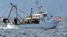 Un peschereccio in azione (foto di repertorio)