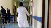Cesena, bambini morti dopo il parto al 'Bufalini'. Ferie forzate per le due ostetriche