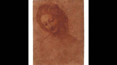 Luca Pacioli. Tra Piero della Francesca e Leonardo