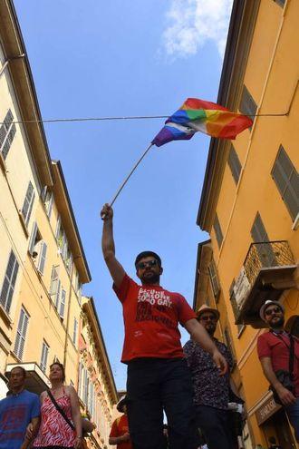 Il Gay Pride di Reggio (Artioli)