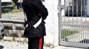 Omicidio ad Ambrogio di Copparo, sono intervenuti i carabinieri (foto Businesspress)