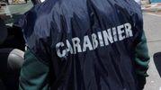 I carabinieri hanno denunciato il giovane a piede libero per coltivazione di stupefacenti