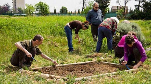 Volontari al lavoro nell'orto solidale
