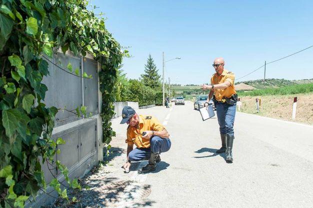I rilievi dopo l'incidente nel rally di San Marino (Foto Pruccoli)