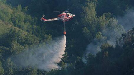 L'elicottero utilizzato per domare l'incendio (foto Frasca)