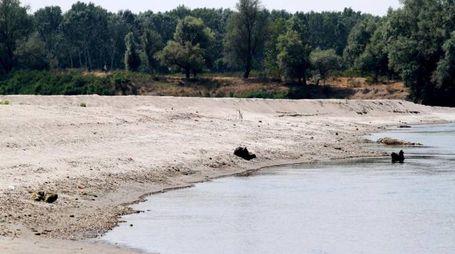 Il fiume Po in secca nella zona di Parma (Ansa)