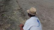 Un rappresentante di Legambiente di fronte alla schiuma gialla