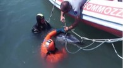 Le operazioni attorno al delfino