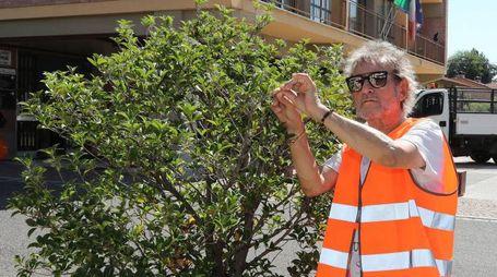 Claudio Golinelli in arancione a Borgo Tossignano (foto Isolapress)