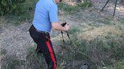 I carabinieri hanno trovato uno specchietto dell'auto (Isolapress)