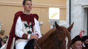 Cavaliere di Piazzarola (Foto Labolognese)